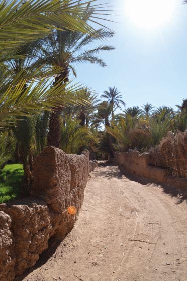 Frauen kennenlernen in marokko